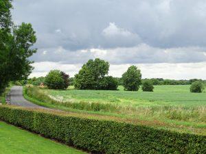 Countryside around Cambridge_ Adam Jones